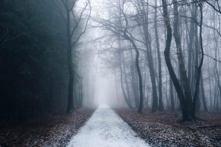 Nebel in Asbach, Deutschland